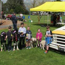 Calf Club or Pet Day